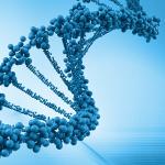 New ASU worldwide resource for exploring genes' hidden messages