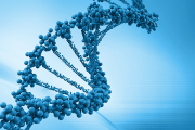 New ASU worldwide resource for exploring genes' hidden messages