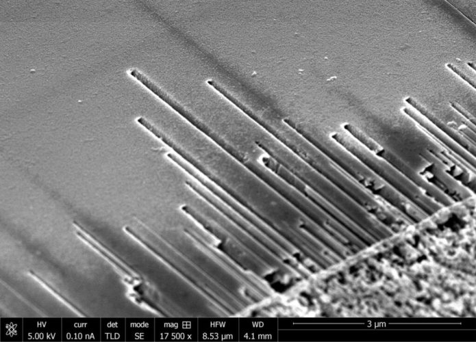 Electron micrograph of surface-directed nanochannels formed on the surface of the semiconductor indium phosphide. Nanochannels are formed using a gold-catalyzed vapor-liquid-solid etch process and their locations are defined by the deposited gold pattern. Credit: Marti/JILA