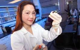 UNL researcher finds gold -- metal-detecting biosensors under development