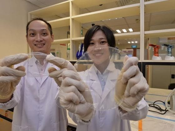 Assoc Prof Thian Eng Han (left) and PhD student Ms Tan Yi Min have developed eco-friendly food packaging material. In this photo, they are holding up the chitosan-based GFSE composite film. Photo: Robin Choo