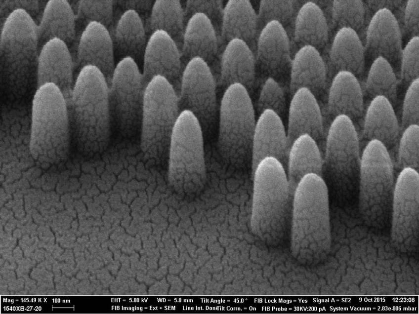 Nature inspired nano-structures mean no more cleaning windows plus 40% energy saving