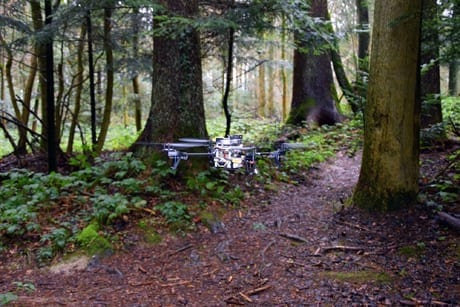 Using a new software drones detect forest paths and can follow these autonomously. (Image: UZH; USI; SUPSI)