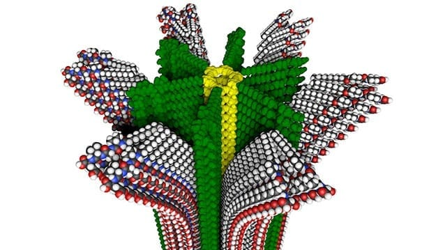 Northwestern University researchers have developed a new hybrid polymer with removable supramolecular compartments, shown in this molecular model. (Credit: Mark E. Seniw, Northwestern University)