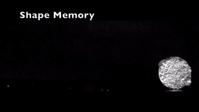 VIDEO via Cornell University