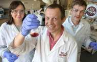 Chemists Pave the Way for an Activated Red Phosphorous Revolution