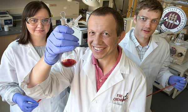 Alina Dragulescu-Andrasi, FSU postdoctoral researcher; Michael Shatruk, professor of chemistry and biochemistry at FSU; and Zane Miller, who recently earned his doctorate from the FSU Department of Chemistry.
