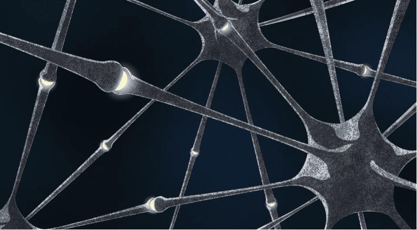 Neuron connections in biological neural networks Source: MIPT press office