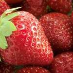 Biocompatible silk keeps fruit fresh without refrigeration
