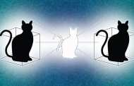 Schrödinger's cat gets a second box to play in helping quantum computing