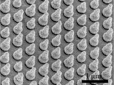 Stanford engineers created arrays of silicon nanocones to trap sunlight and improve the performance of solar cells made of bismuth vanadate (1?m=1,000 nanometers). CREDIT Wei Chen and Yongcai Qiu, Stanford