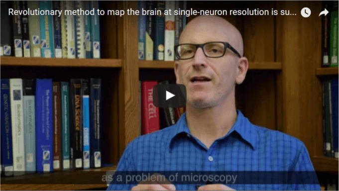 Revolutionary method to map the brain at single-neuron resolution is successfully demonstrated