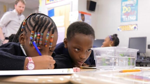 Credit: David Schmelick and Deirdre Hammer/JHU Students at Baltimore's Thomas Jefferson Elementary Middle School observe and take notes on their zebrafish.