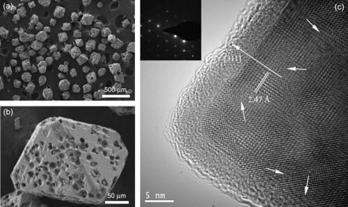 SEM images of the as-synthesized Fe3O4 product with (a) low- and (b) high-magnification.