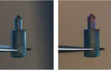 Solids made from silk protein that can be preprogrammed with biological, chemical, or optical functions