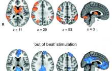 Using electricity to synchronise brain waves boosts working memory