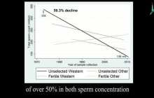 Sperm concentration in Western men has declined more than 50 percent in less than 40 years