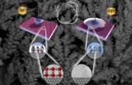 Smart surface changes from being very water-repellent to very water-absorbent using electricity