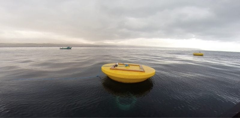 Wave energy system powers a desalination plant that provides coastal cities with fresh water