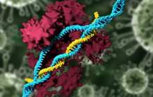 What if you can reprogram the DNA of your liver while you're still using it?