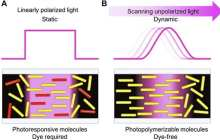 Flexible liquid crystal devices using highly functional organic materials