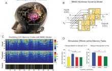 Prosthetic memory system for short-term memory performance showed a 35 to 37 percent improvement over baseline measurements