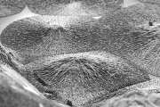 Regenerating dental enamel and bone