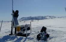 Artificial intelligence will analyze bird songs in a warming Arctic