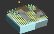 Cell sized robots introduce a new field in robotics