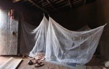 Malaria has a new type of bed net to help protect millions