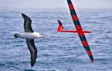 Training robotic gliders to soar like birds using artificial intelligence