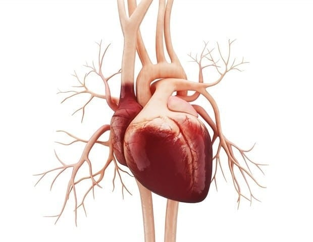 A micropeptide molecule that can restore normal heart function: in ...