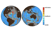 Ocean acidification caused by high levels of human-made CO2 is dissolving the seafloor