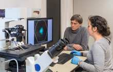 Artificially produced cells communicate with each other