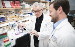 Promising new pancreatic cancer treatment progresses to a clinical trial