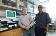 An entirely new class of cancer-killing agents that show promise in eradicating cancer stem cells