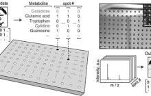 Towards molecular data storage systems: Molecular thumb drives
