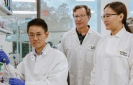 A special molecular switch could be embedded into gene therapies to allow doctors to control dosing