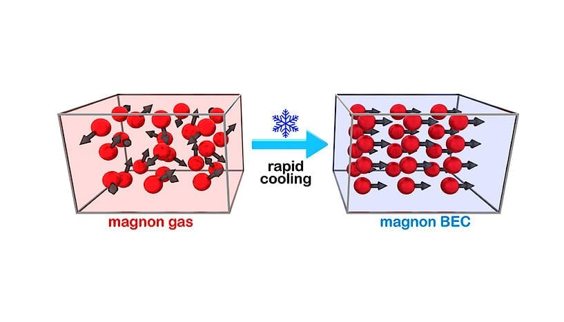 (From left to right) Magnon gas particles bounce around in many directions inside a magnetic nanostructure. When rapidly cooled, they all spontaneously jump into the same state, forming a Bose-Einstein condensate (BEC). This is a much simpler method to generate the condensate, which could have implications for quantum computing. (Foto: Dr. Andrii Chumak, Technische Universität Kaiserslautern/Universität Wien)