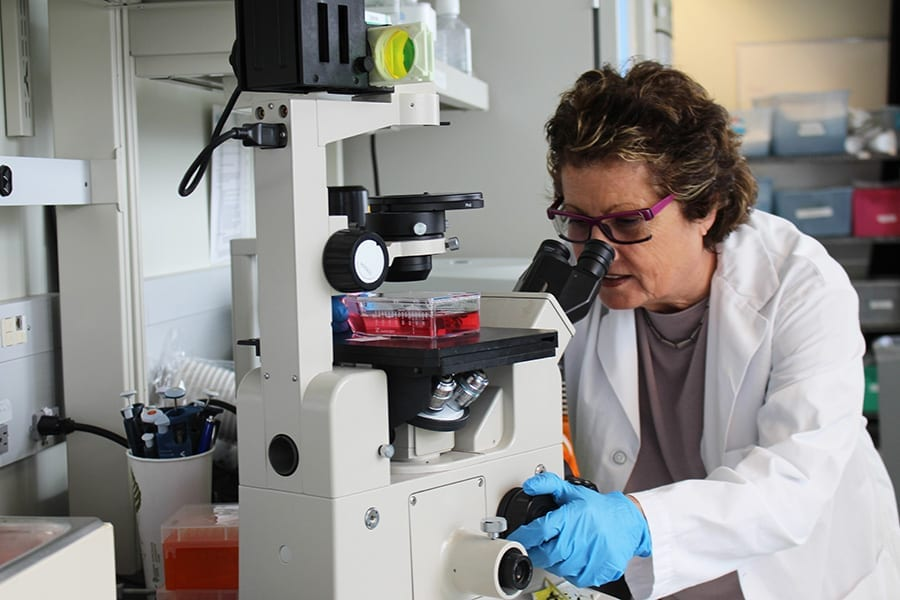 Dr. Eleanor Fish led the international team of researchers. (Photo: UHN)