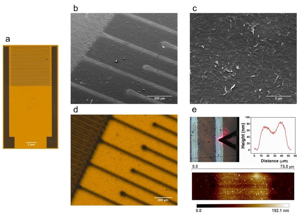 Researchers are using aerosol-jet-printing technology to create these graphene biosensors that can detect histamine, an allergen and indicator of spoiled fish and meat.