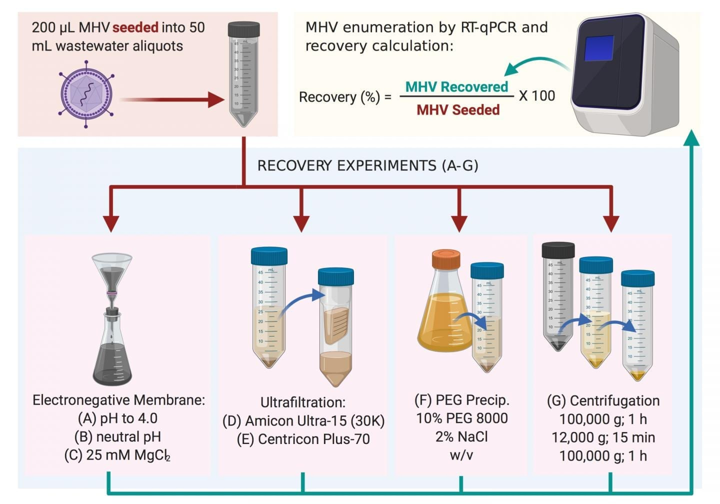 Methods used to recover MHV in this study. The most successful was method (C), followed by method (B) (Warish Ahmed et al., Science of The Total Environment, June 5, 2020).  CREDIT Warish Ahmed et al., Science of The Total Environment, June 5, 2020