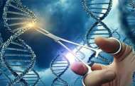 The CRISPR/Cas9 system is very effective in treating metastatic cancers