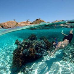 mare ed immersioni Bali e indonesia