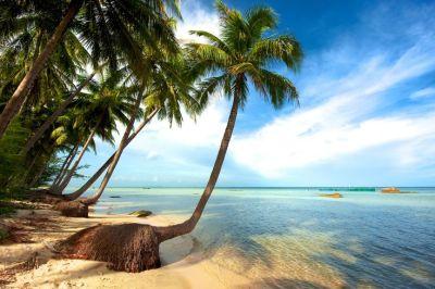 Tour organizzati nelle meravigliose isole tropicali del Vietnam del sud