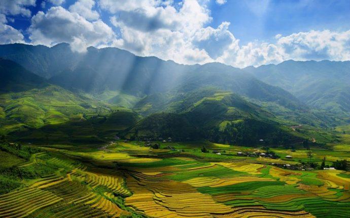 Sa Pa risaie vietnam