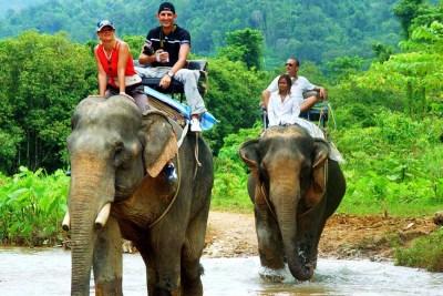 escursione in elefante parco nazionale di khao sok in thailandia