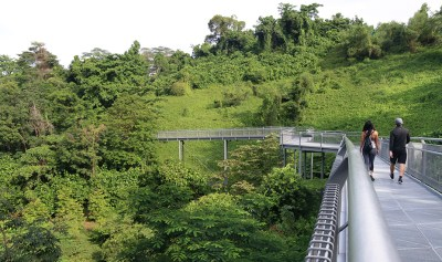 natura a singapore nel mount faber park