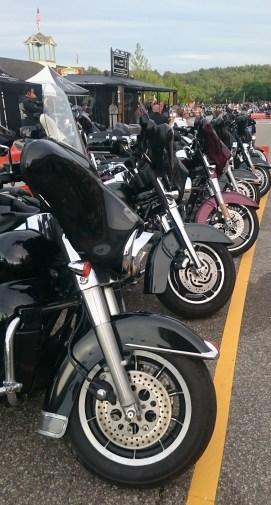 laconia bikes