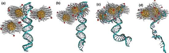 Nanopartículas de ouro destroem moléculas de DNA